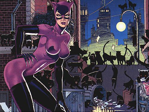 jim balent catwoman