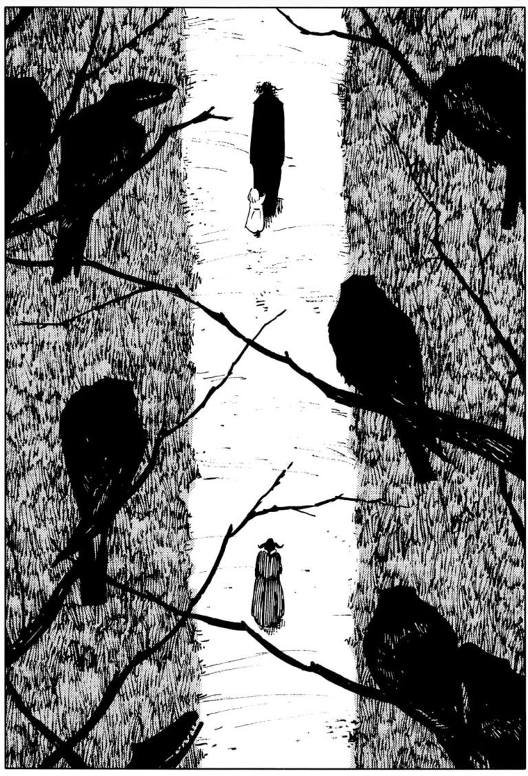 tgftos walking outsider crows